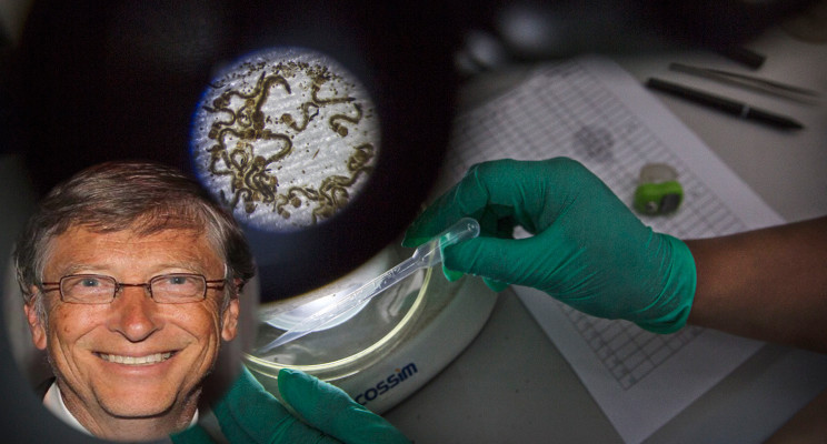 Bill Gates is thinking of wiping malaria from Africa, to zero malaria.
